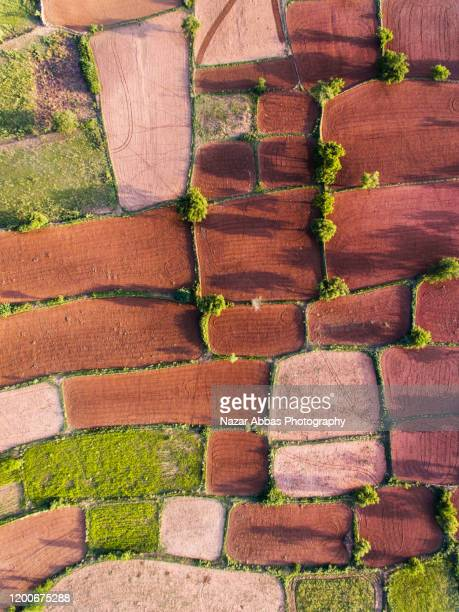 looking down at land ready for cultivation. - nazar abbas photography stock pictures, royalty-free photos & images