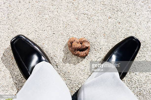 Looking down at pile of dog feces by man's feet