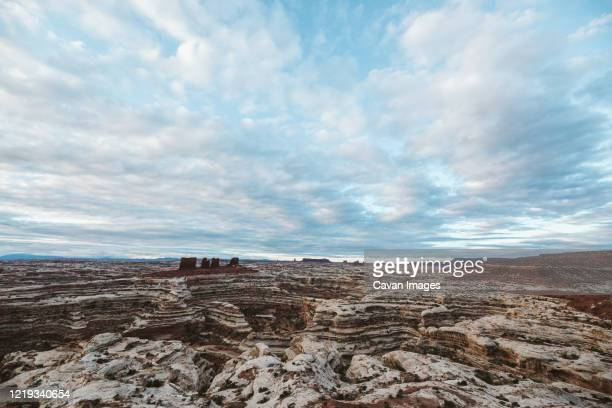 looking down at the canyons of the maze in canyonlands utah desert - canyonlands national park stock pictures, royalty-free photos & images
