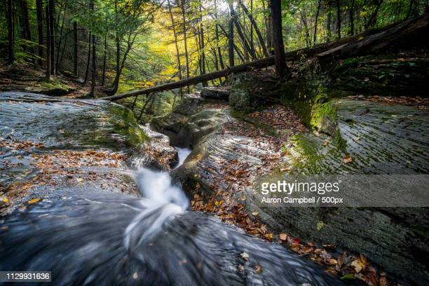 looking down the water chute, 20161017 - sullivan county pennsylvania stock pictures, royalty-free photos & images