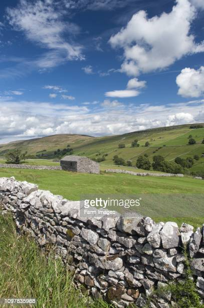 Looking down Walden in the summer Wensleydale in the Yorkshire Dales UK