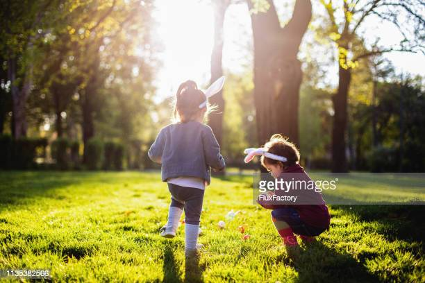 looking for easter eggs - easter photos stock pictures, royalty-free photos & images