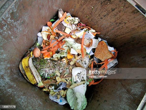 Looking into the organic dustbin, organic waste, kitchen rubbish