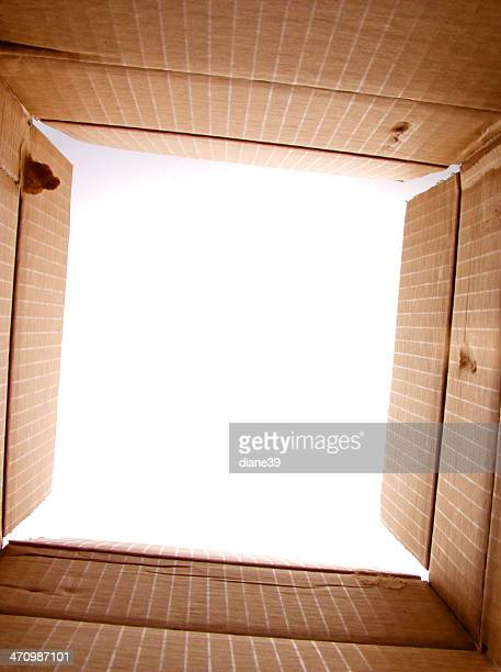 looking out from the box