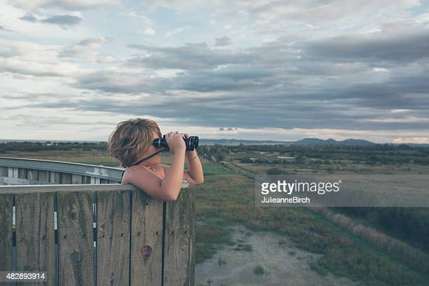 looking out over nature reserve - lookout tower stock pictures, royalty-free photos & images