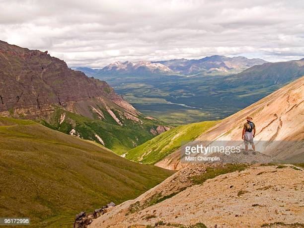 Looking out over Wrangell St. Elias
