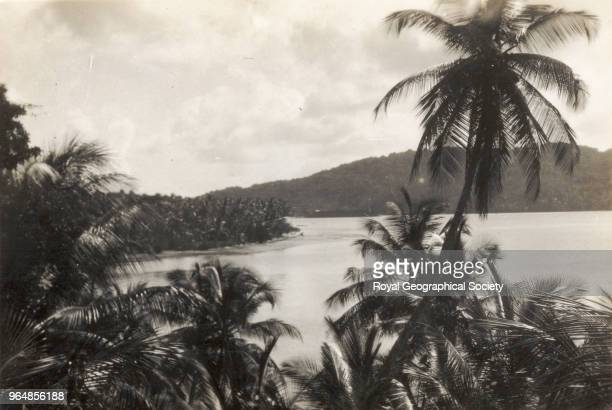Looking out to sea at some islands through a row of palm trees, Trinidad and Tobago, December 1931.