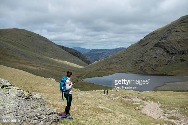 looking towards styhead tarn on the trail towards great gable and scafell pike in the lake district national park, cumbria, england, united kingdom, europe - alex pike stock pictures, royalty-free photos & images