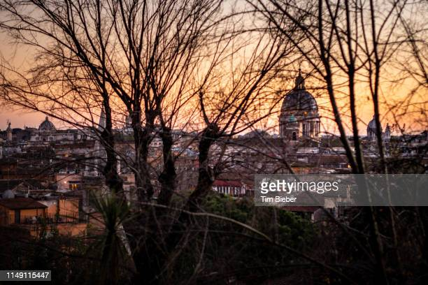 looking towards the dome of san carlo al corso through the bare trees in winter - piazza san carlo stock pictures, royalty-free photos & images