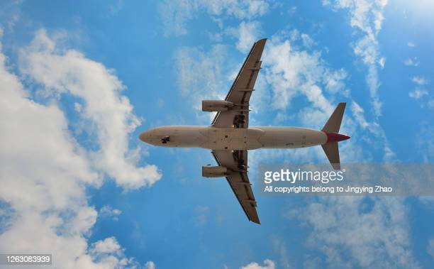 looking up at a airplane landing overhead under blue sky and white clouds - airbus a320 stock pictures, royalty-free photos & images