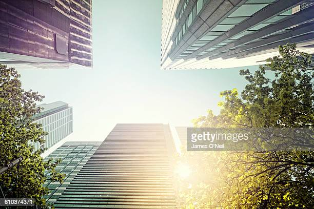 looking up at melbourne buildings - capital cities stock pictures, royalty-free photos & images