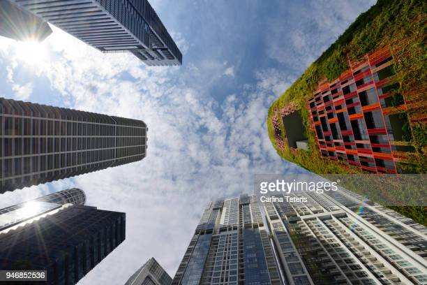 looking up at office towers in singapore's tanjong pagar - sustainable architecture stock pictures, royalty-free photos & images