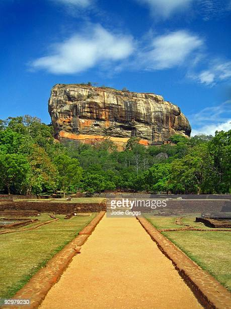 looking up at sigiriya, sri lanka - sigiriya stock photos and pictures