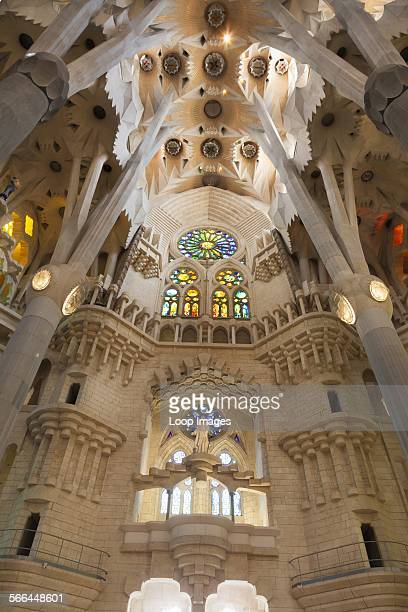 Looking up into the vaulted decorative ceiling of La Sagrada Familia Cathedral