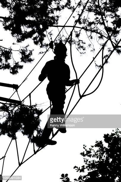 Looking up to the silhouette of a man on an rope walkway during a treetop adventure course