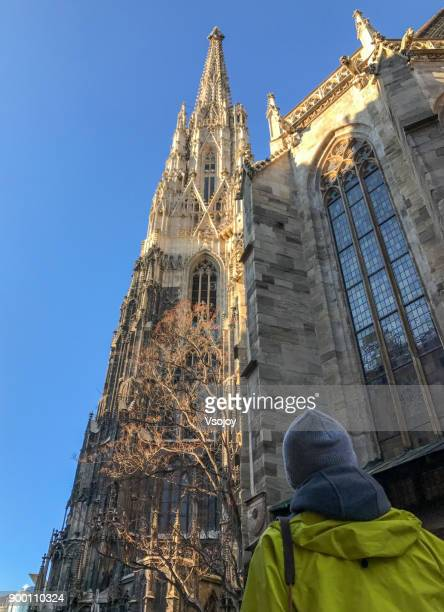 looking up to the st. stephen's cathedral, vienna, austria - vsojoy stock pictures, royalty-free photos & images