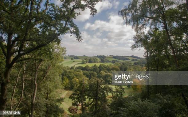 Lookout at Winkworth Arboretum