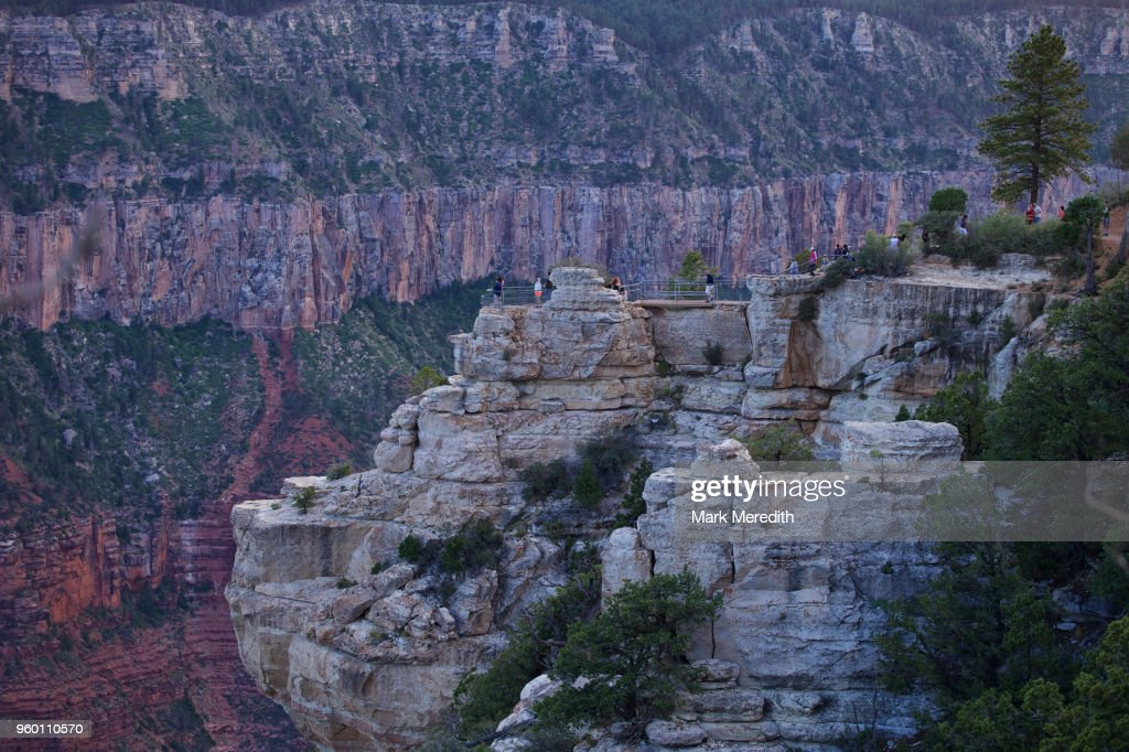 Lookouts, or overviews, below Grand Canyon Lodge North Rim : Stock-Foto