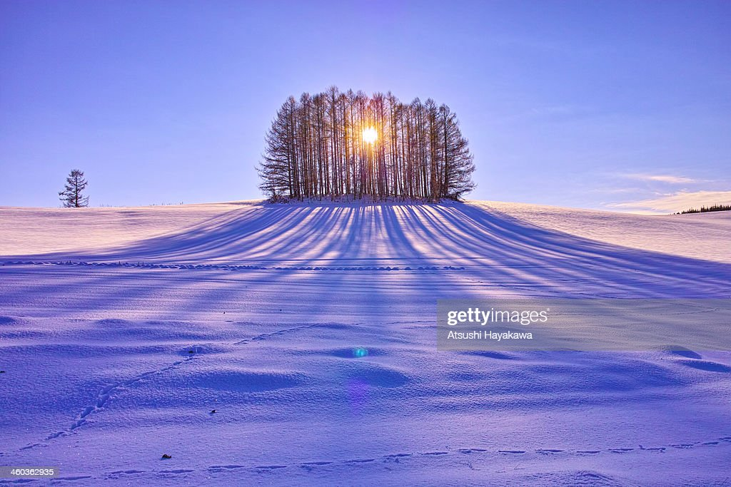 A looming shadow : Stock Photo