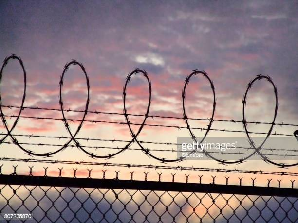 loops of harsh barbed razor wire & fence before vivid sky - barbed wire stock pictures, royalty-free photos & images