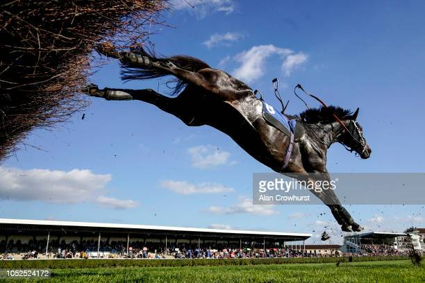 A loose horse clears the last at Wincanton Racecourse on October 19 2018 in Wincanton England