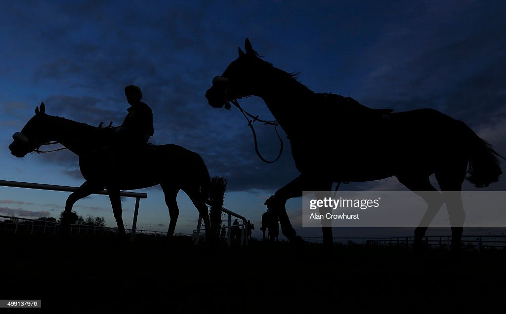 A loose horse returns as other runners make their way back in after finishing at Fairyhouse racecourse on November 29, 2015 in Ratoath, Ireland.