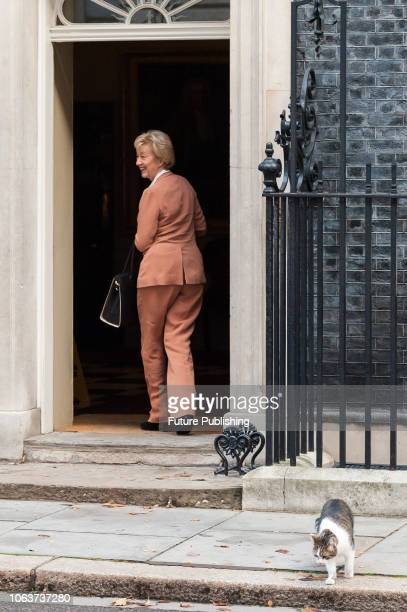 Lord President of the Council and Leader of the House of Commons Andrea Leadsom arrives for a Cabinet meeting at 10 Downing Street in central London...