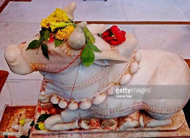 lord shiva-nandi-tortoise-somnath-gujarat - maha shivaratri stock pictures, royalty-free photos & images