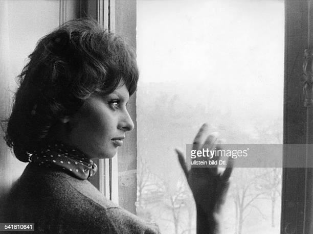 Loren Sophia * Schauspielerin Italien Portrait im Profil blickt aus einem Fenster undatiert