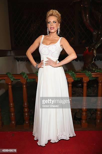 Lorena Herrera attends Premio Nacional De La Mujer 2014 at Casino Naval de la Secretaria de Marina on December 3 2014 in Mexico City Mexico