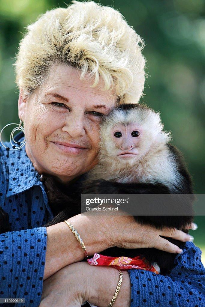 Pet Capuchin