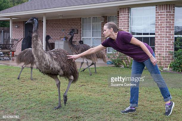 Lori Kessler is relieved to have all four emus coralled in Randy Balogh's Valley Creek Drive home where they stayed about two hours before being...