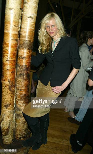 Lori Singer during 3rd Annual Tribeca Film Festival Showtime Party at Nobu in New York City New York United States