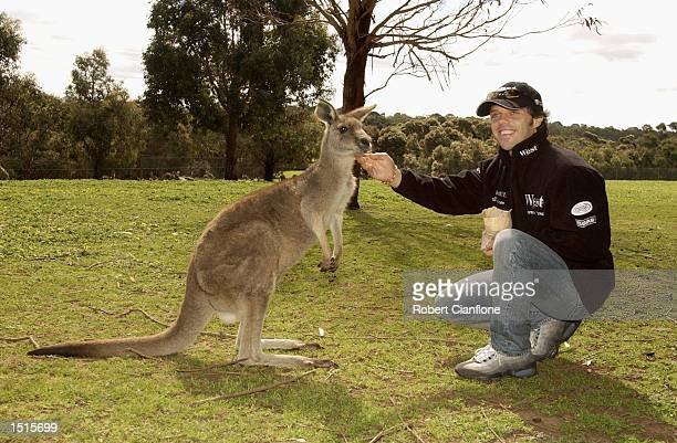 Loris Capirossi of Italy and the West Honda Pons Race Team feeds the kangaroos at the Phillip Island Wild Life Park in preperation for Round 15 of...