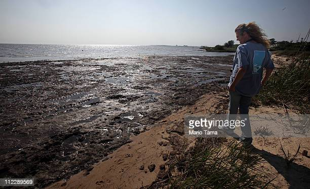 Lorrie Williams walks by a piece of marsh ravaged by the effects of the BP oil spill April 17 2011 in Ocean Springs Mississippi Williams lives 2 ½...