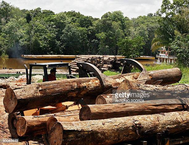 A lorry of confiscated wood is unloaded at the port of the Moju river 40 Km away from Tailandia Para northen Brazil on February 27 2008 The wood will...