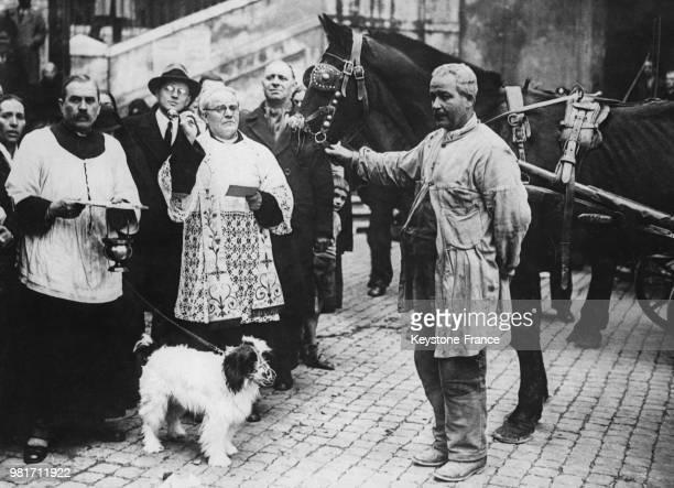 Lors de la fête de Saint Antoine bénédiction traditionnelle des animaux à Rome en Italie le 9 janvier 1933