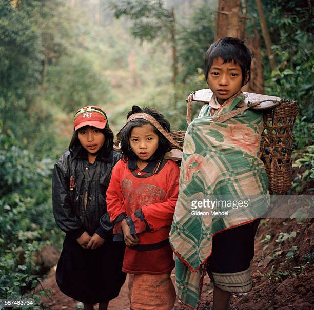 Loryea Yepow and Shongtee on the trail just outside the Ban Nam Lai Akha village The Akha are a hill tribe of subsistence farmers known for their...