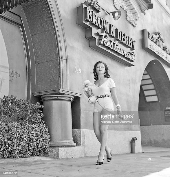 Los Angeles 031 c MOA Hollywood Brown Derby Joan Bradshaw 981957tif Photo by Michael Ochs Archives/Getty Images