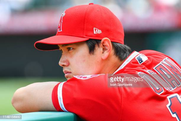 Los Angeles Angels designated hitter Shohei Ohtani looks on from the dugout during a MLB game between the Minnesota Twins and the Los Angeles Angels...