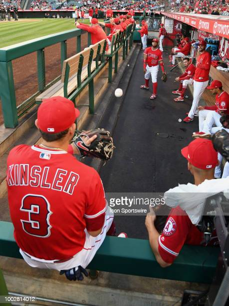 Los Angeles Angels of Anaheim infielders Ian Kinsler and Luis Valbuena play catch in the dugout before a game against the Kansas City Royals played...