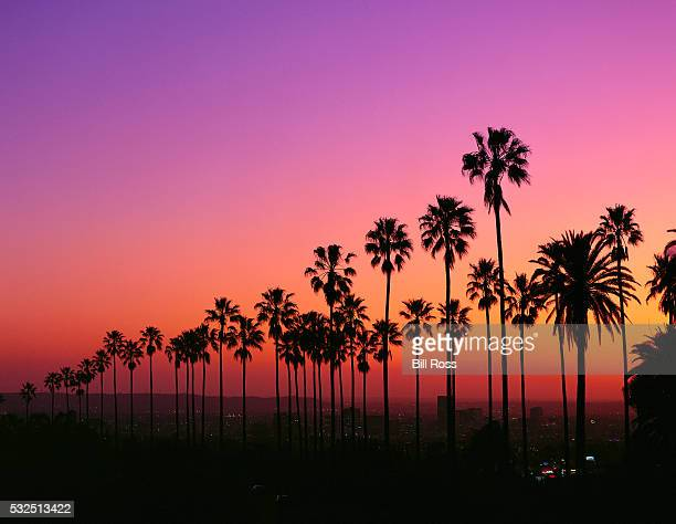 los angeles at twilight - de stad los angeles stockfoto's en -beelden
