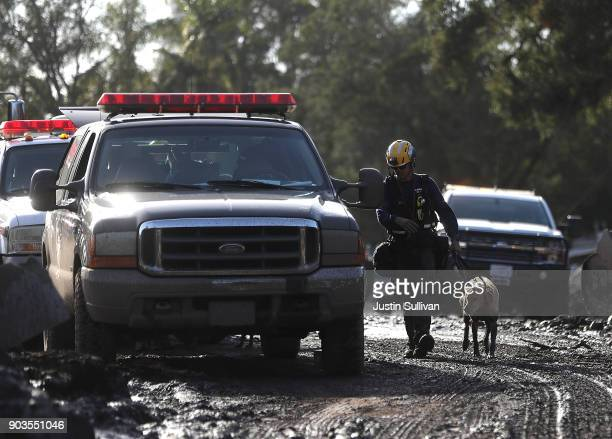 Los Angeles County firefighter walks with his dog after searching through debris field from a mudslide on January 10 2018 in Montecito California 15...