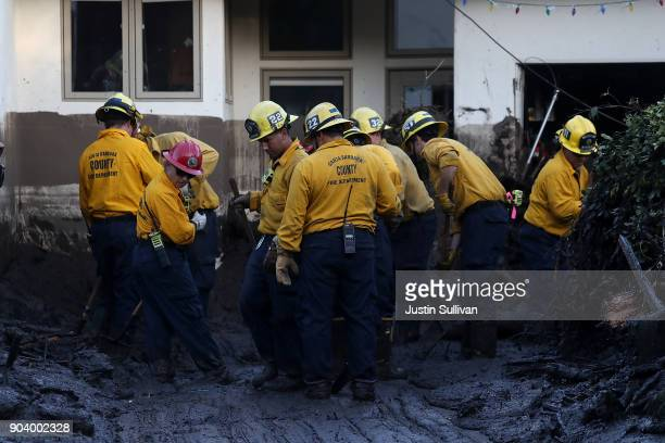 Los Angeles County firefighters dig through mud after a cadaver dog alerted on a pile of debris from a mudslide on January 11 2018 in Montecito...
