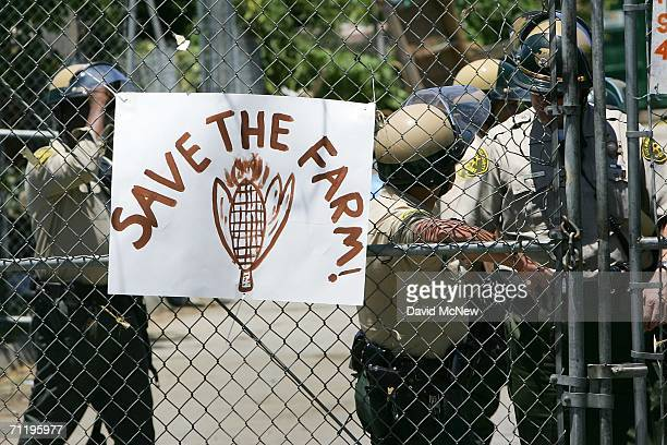 Los Angeles County Sheriffs deputies guard a back gate during a protest of the eviction of urban farmers from land whose owner wants to build a...