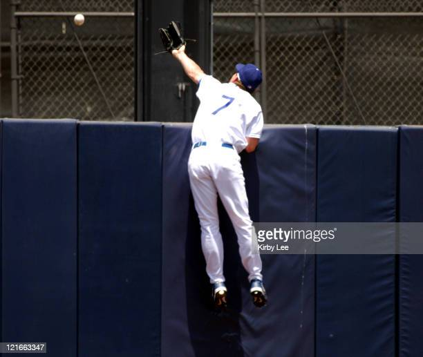Los Angeles Dodgers center fielder JD Drew makes an unsuccesful leaping attempt for a home run by Jose Cruz of the Arizona Diamondbacks in the second...