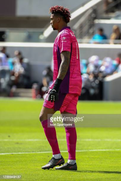Los Angeles FC goalkeeper Jamal Blackman during the Los Angeles FC vs San Jose Earthquakes MLS game on October 16 at BANC of California Stadium in...