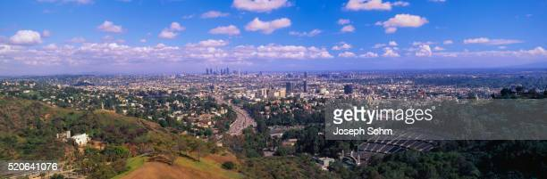Los Angeles from Hollywood Hills
