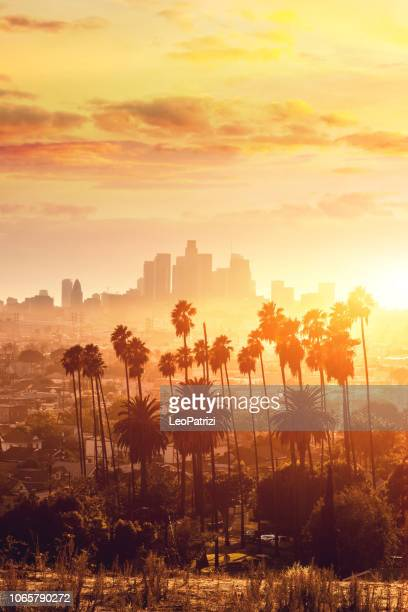 los angeles golden hour cityscape over downtown skyscrapers - califórnia imagens e fotografias de stock