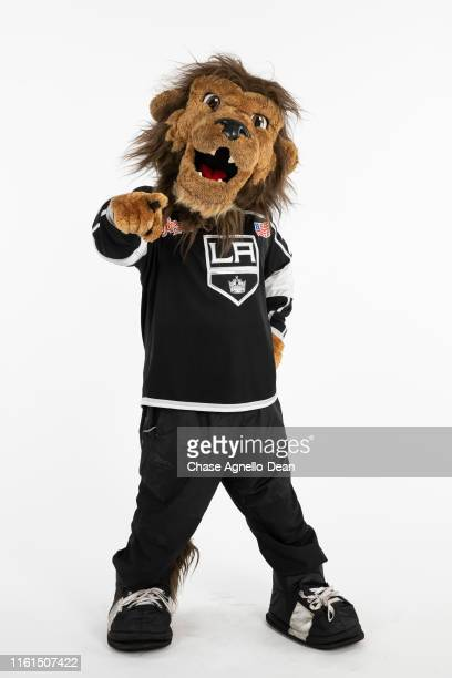 Los Angeles Kings mascot Bailey poses for a portrait on August 13 2019 at the United Center in Chicago Illinois